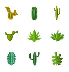 cacti icons set cartoon style vector image
