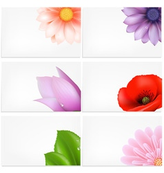 Floral Greeting Cards Background vector