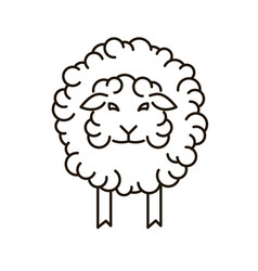 not shorn sheep in line vector image