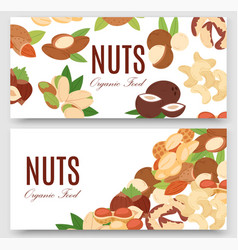 Nuts collection flat cartoon set banners vector