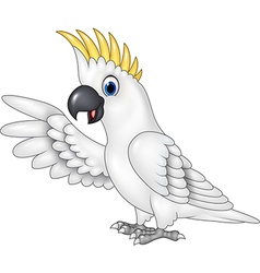 Cartoon funny white parrot presenting isolated vector image