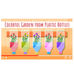colorful garden from plastic bottles video vector image