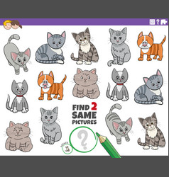 Find two same cartoon cats characters educational vector