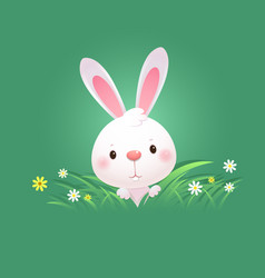 Greeting card with white easter bunny vector