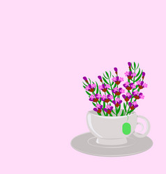 lavender in a cup vector image