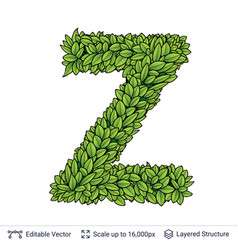 Letter z symbol of green leaves vector