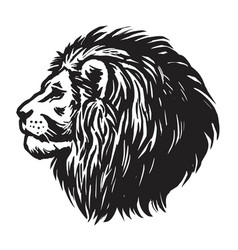 lion head hand drawn realistic drawing vector image