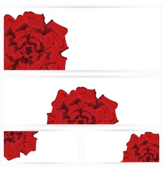 Set of red roses isolated on white background vector image