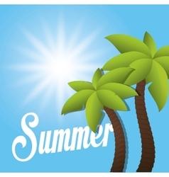 Summer palms tree vector