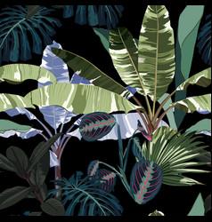 tropical vintage night plants palm trees banana vector image