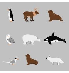 Arctic and antarctic animals set in flat vector image