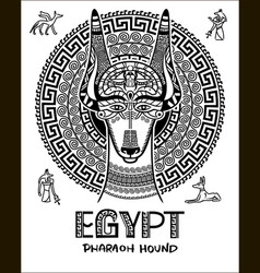 image of an egyptian dog ornament of vector image vector image