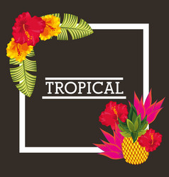 tropical flower pineapple leaves card vector image vector image
