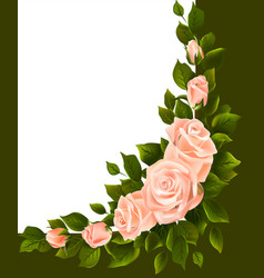 bouquet of roses with leaves in the corner vector image