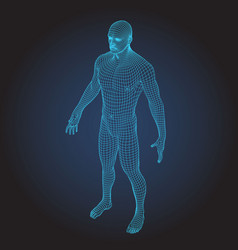 3d wire frame human body full face vector image