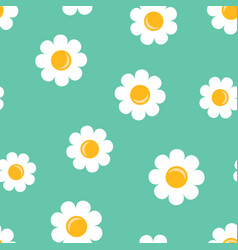 chamomile flower icon seamless pattern background vector image