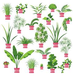 Flat pot plants set vector