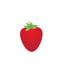 garden strawberry fruit flat icon isolated on vector image