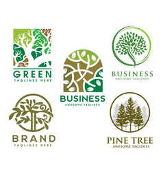 green tree with leaves logo vector image
