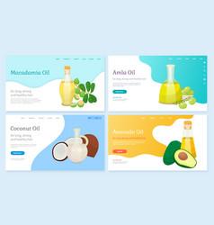 Macadamia and amla coconut and avocado oils set vector
