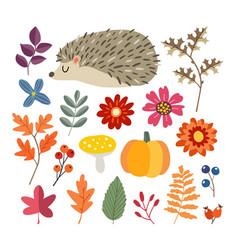 set cute hand-drawn autumn elements hedgehog vector image