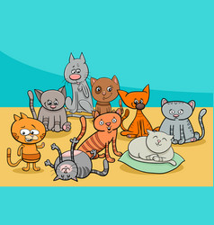 funny cats group cartoon vector image