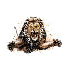 Portrait a jumping lion from a splash vector