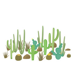 Set cactus plants flowering cacti vector