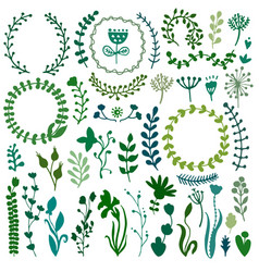 set doodles branches herbs flowers plants vector image