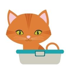 orange small cat sitting green eyes bathtub vector image vector image