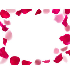 Invitation template with rose petals vector