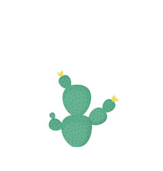 opuntia cactus plants cacti prickly pear vector image