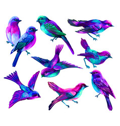 set multi-colored birds wall sticker vector image