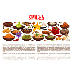 Spices condiments and food seasoning banner vector