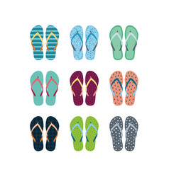 summer flip flops set vector image