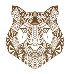 Tiger head sketch vector image