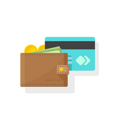 wallet with money and credit or debit card vector image