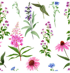 watercolor seamless pattern wild field flowers vector image