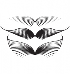 Wing graphics vector