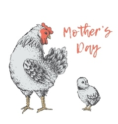 Vintage design with hen Mothers days vector image vector image
