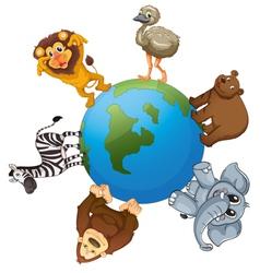 Animals around world vector