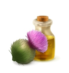 Burdock oil natural cosmetics vector