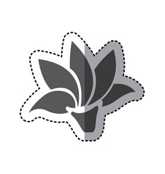 Contour rose with pointed petals icon vector