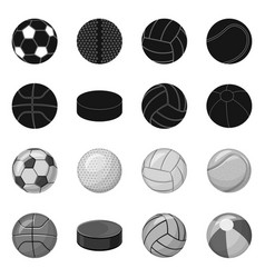 Design of sport and ball icon collection vector