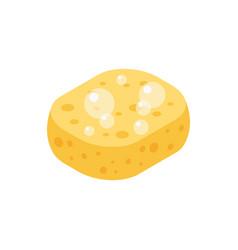 Sponge isometric icon vector