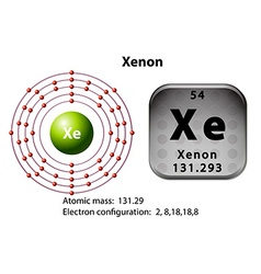 Symbol and electron diagram for Xenon vector