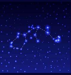 the constellation of aquarius in the night starry vector image