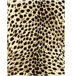 Cheetah leopard animal skin texture vector