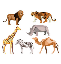 set of africa animals on white background vector image