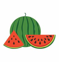 set of watermelon vector image